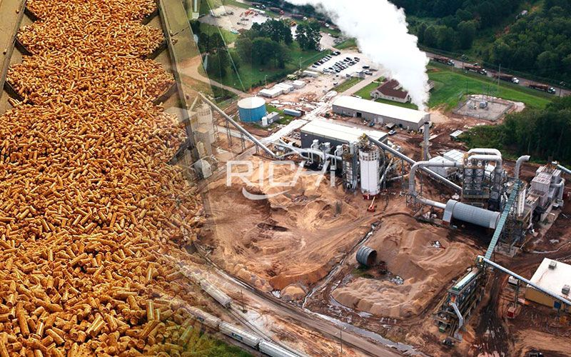 Raw Material Safety Analysis of Thai Wood Pellet Production (Part 1)