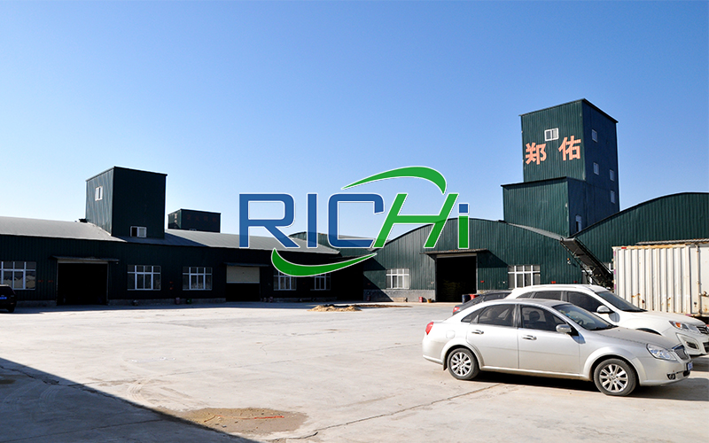 rice husk biomass pellet production line project