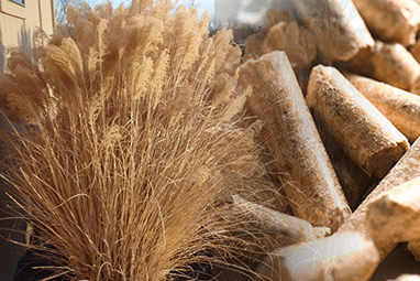 Complete Miscanthus Pellet Production Line Solution