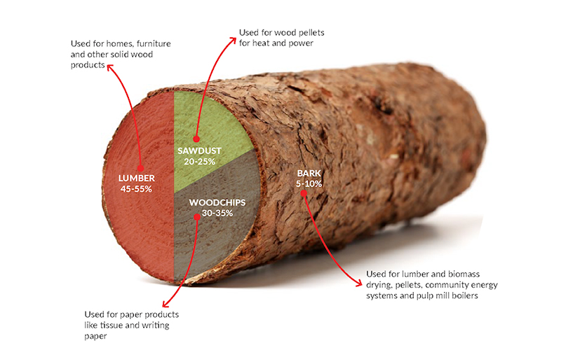 Wood Pellet Plant Production Should Follow The Sustainable Development Strategy